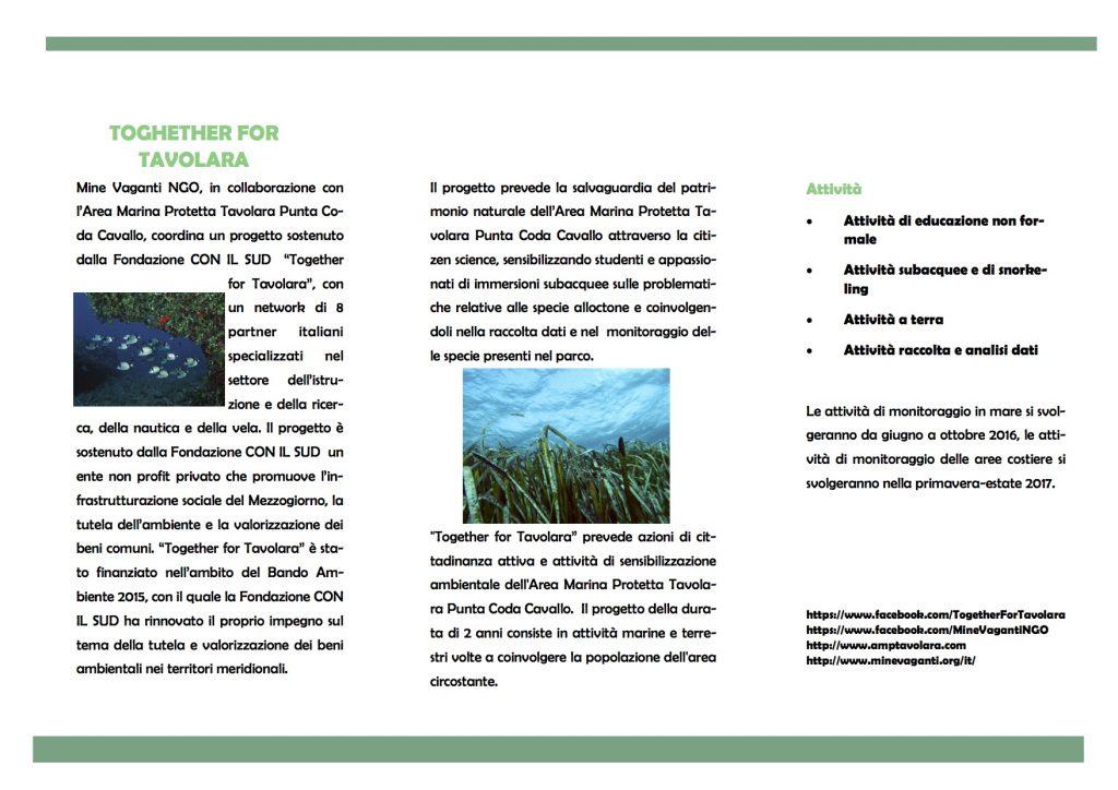 Brochure-TfT 2