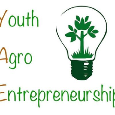 """Capacity Building Youth """"Youth Agro Empowerment Project"""""""