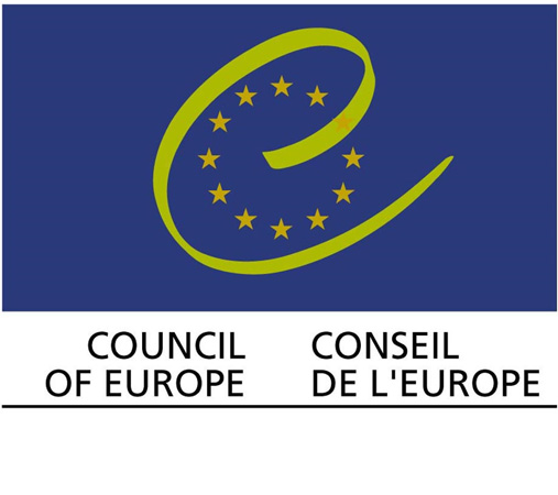 "Council of Europe ""Consultations on Children's Rights in the Digital Environment"""