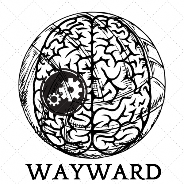 "Capacity Building Youth ""WAYWARD"""